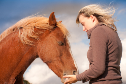 Online Equine Facilitated Learning